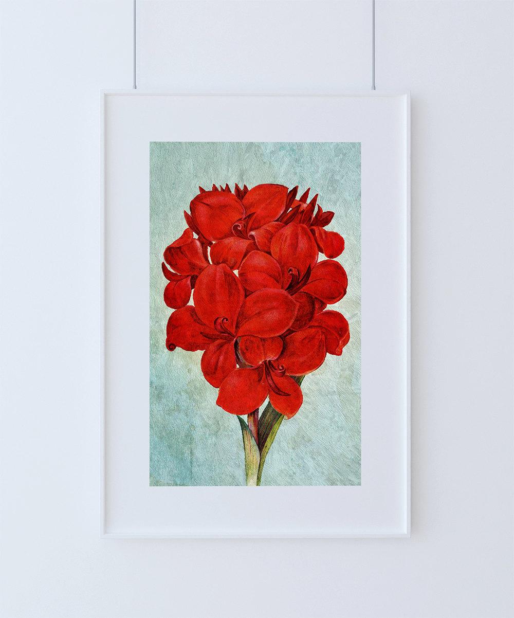 Art Décor: Amaryllis Decor Amaryllis Art Amaryllis Gift Botanical