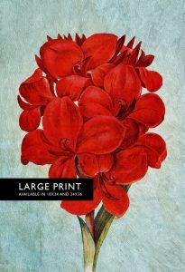 amaryllis-decor-art-flower-botanical-amaryllis-print-kitchen-decor-floral-amaryllis-print-wall-decor-floral-wall-art-large-giclee-canvas-5817b11b1.jpg
