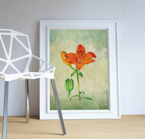 asiatic-lily-decor-lily-art-asiatic-lily-gift-botanical-print-flower-kitchen-decor-floral-print-floral-wall-decor-wall-art-canvas-5817b67f3.jpg