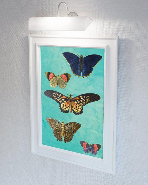 Butterfly decor Moth art botanical Natural Botanical print decor Moth print butterfly wall decor Butterfly wall art Canvas