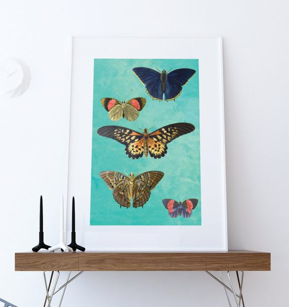 Butterfly decor Moth art botanical Natural Botanical print decor Moth print butterfly wall decor Butterfly wall art Canvas