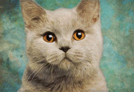 Cat Print Feline British Short Hair Illustration Decor Ocean Wall Art - Giclee Print on Cotton Canvas and Paper Canvas