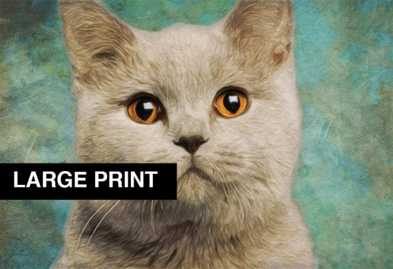 Cat Print Feline British Short Hair Illustration Decor Ocean Wall Art - Large Giclee Print on Canvas Cotton and Satin Photo Paper