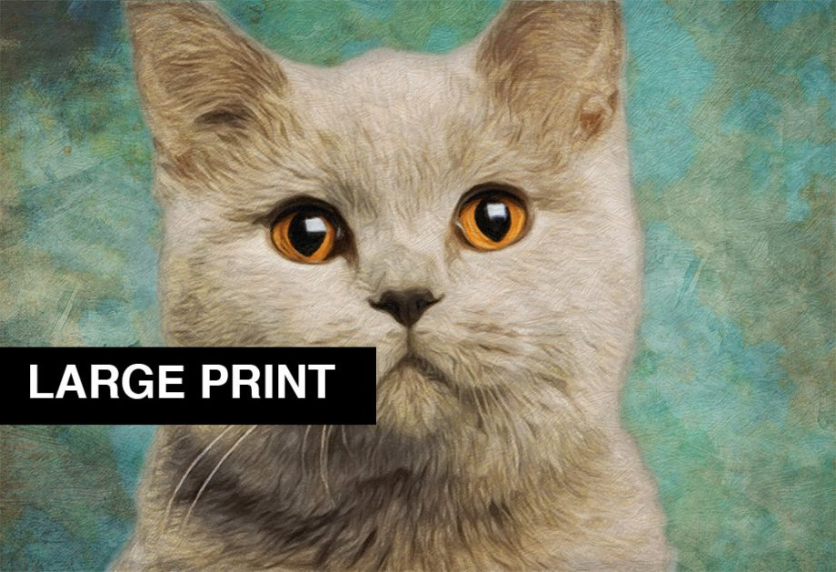 Cat Print Feline British Short Hair Illustration Decor Ocean Wall Art - Large Giclee Print on Canvas Cotton and Satin Photo Paper