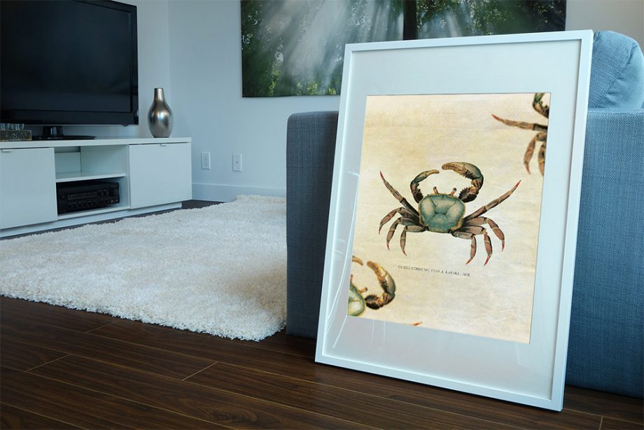 "Crab Beach Print 24x24"" Vintage Art Print Vintage Nautical Decor Ocean Wall Art - Giclee Print on Cotton Canvas and Satin Photo Paper"