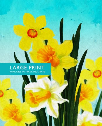 Daffodil Print Daffodil art Daffodil botanical print flower kitchen decor floral print floral wall decor Daffodil wall art - Large Giclee