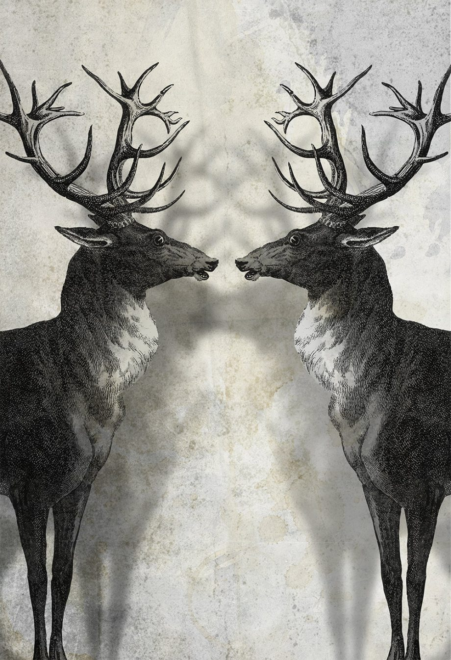 Deer Print Deer Antlers Stag Print Wall Art - Giclee Print on Cotton Canvas and Paper Canvas