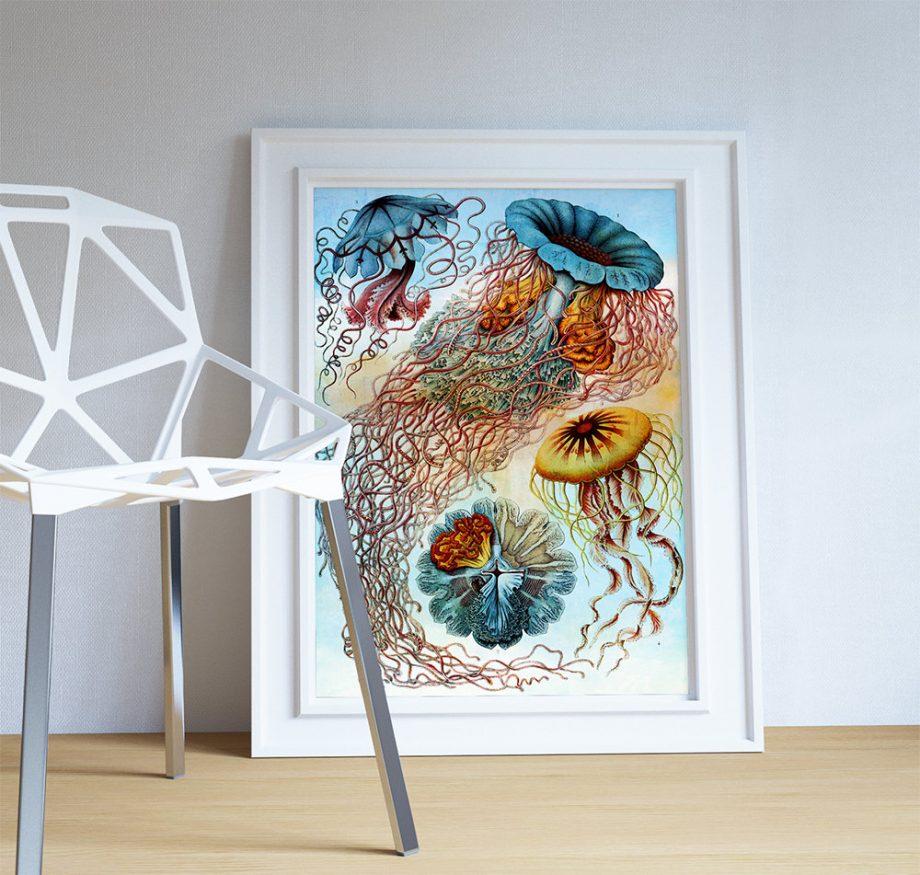 Ernst Haeckel Discomedusae Print Jellyfish Art Vintage Nautical Decor Ocean Wall Art - Giclee Print on Canvas & Satin