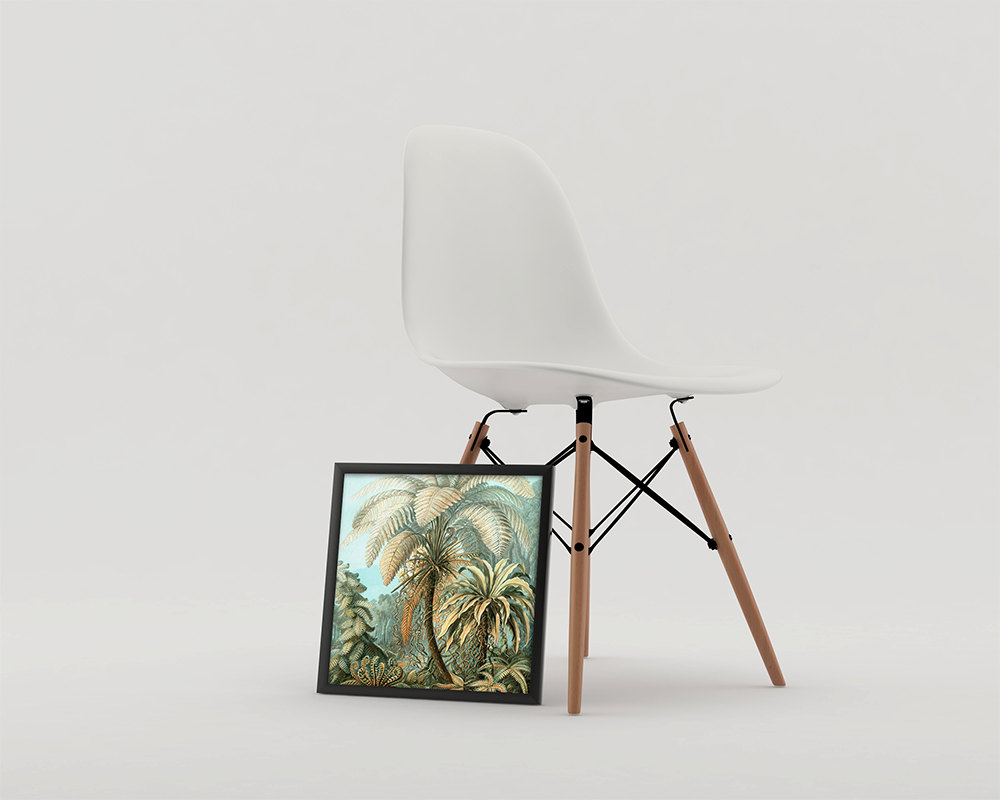 Ernst Haeckel Filicinae Print Tropical Art Vintage