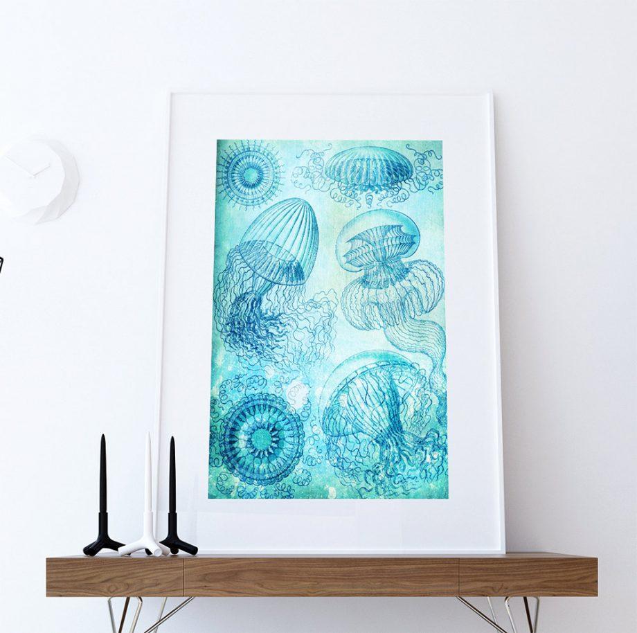 Ernst Haeckel Leptomedusae Print Jelly Fish Art Vintage Nautical Decor Ocean Wall Art - Giclee Print on Canvas & Satin