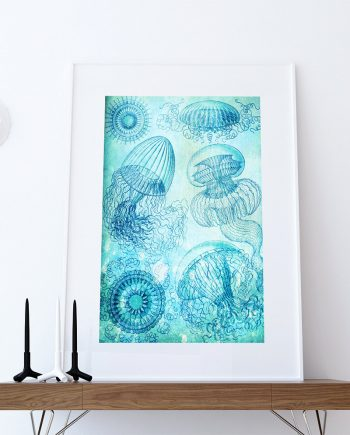 Ernst Haeckel Leptomedusae Print Jelly Fish Art Vintage Nautical Decor Ocean Wall Art - Giclee Print on Cotton Canvas and Paper Canvas