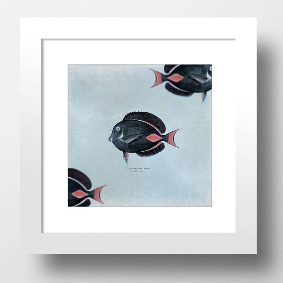 "Fish Beach Print 24x24"" Vintage Art Print Vintage Nautical Decor Ocean Wall Art - Giclee Print on Cotton Canvas and Satin Photo Paper"