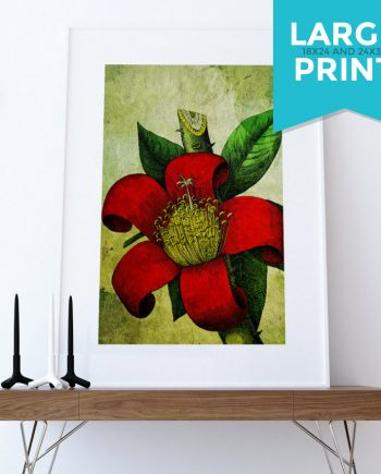 Floral Red Tropical Art Gift Botanical Large Poster Orchid Decor Flower Print Tropical Wall Decor on Satin or Cotton Canvas