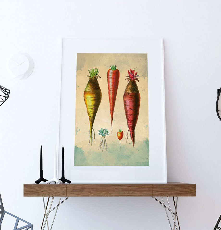 Kitchen Print Kitchen Decor Carrot Varieties Art Rustic Farmhouse Giclee Print on Cotton Canvas and Paper Canvas Poster Home Wall Art