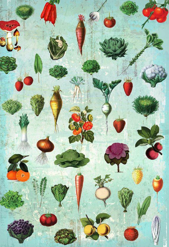 Kitchen Print Kitchen Decor Fruit and Vegetables Rustic Farmhouse Giclee Vegan Print Vegetable Print on Cotton Canvas and Satin Photo Paper