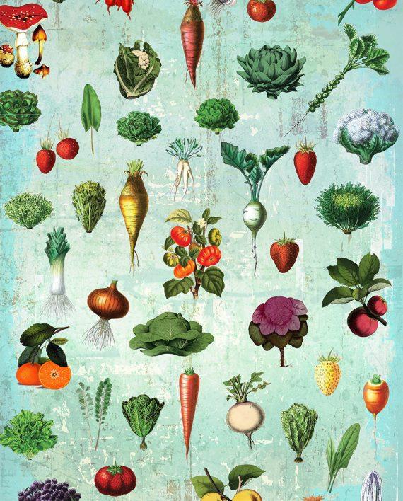 Kitchen Wall Decor Vegetables : Kitchen print decor fruit vegetables art rustic