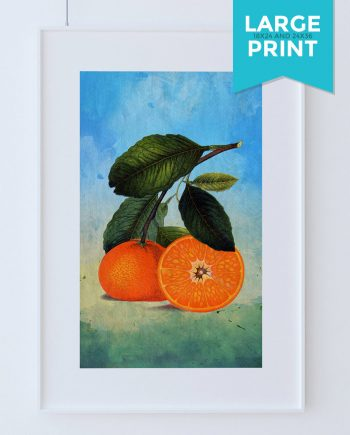 Kitchen Wall Art Oranges Print Kitchen Large Print Florida Food Photograph Fruit Print Vintage Botanical Art Retro on Satin or Cotton Canvas