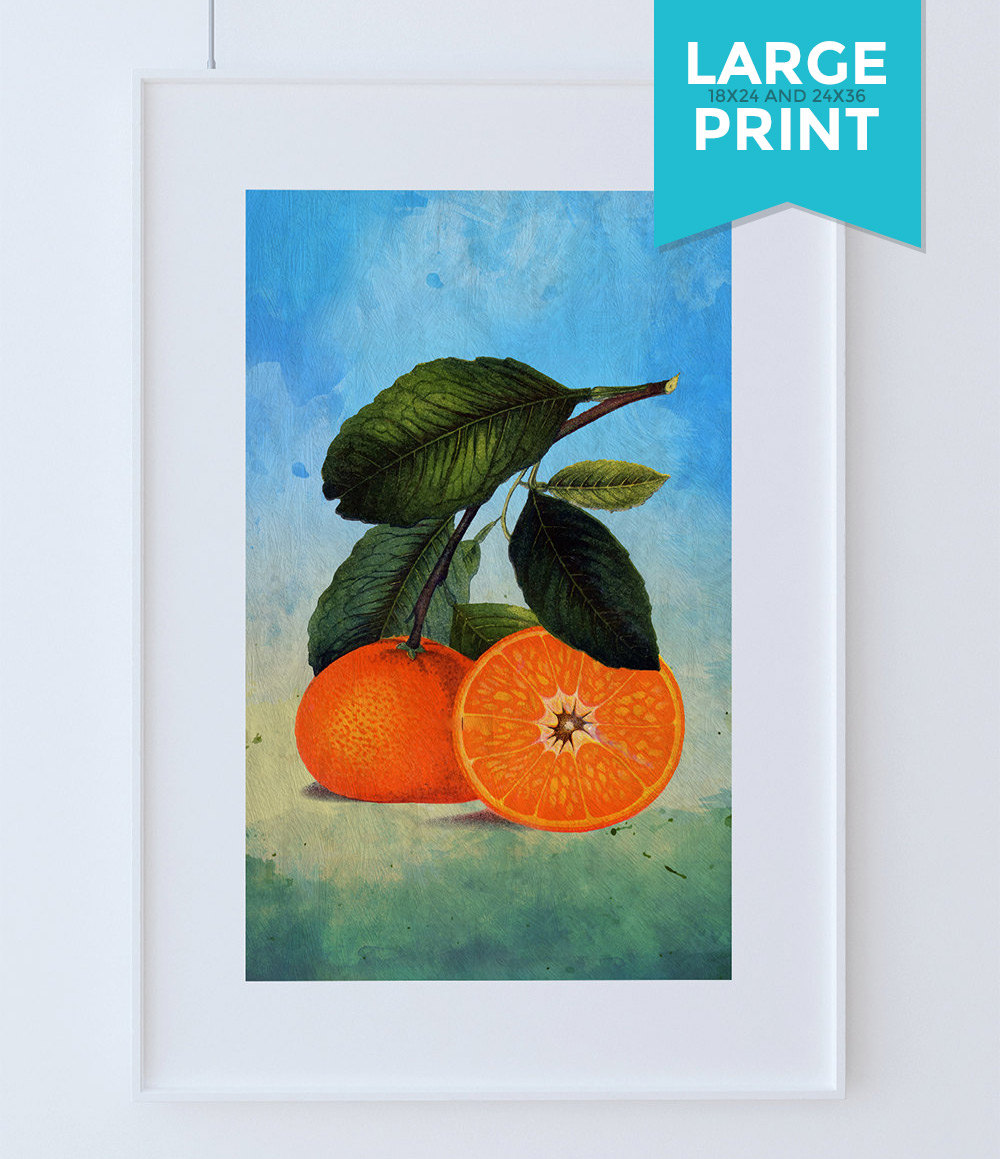 Kitchen Art Vegetables Print Botanicals Kitchen Art: Kitchen Wall Art Oranges Print Kitchen Large Print Florida