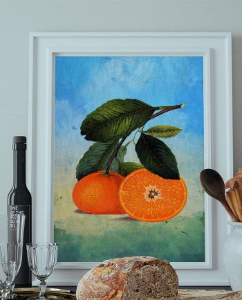 Kitchen Wall Art Oranges Print Kitchen Print Florida Food Photograph Fruit Print Vintage Botanical Art Retro on Cotton Canvas & Paper Canvas