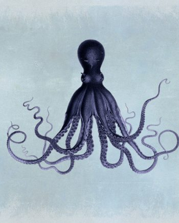 "Lord Bodner's Octopus 24x24"" Art Print Sea Squid Vintage Nautical Decor Ocean Wall Art - Giclee Print on Cotton Canvas and Satin Photo Paper"