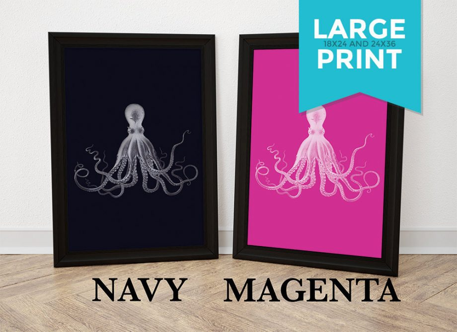 Lord Bodner's Octopus Art Print 5 Colors Sea Squid Vintage Nautical Decor Ocean Wall Art Large Poster Giclee Print on Satin or Cotton Canvas