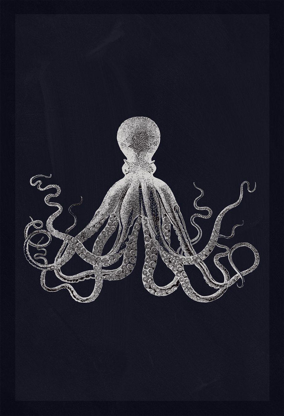Lord Bodners Octopus Art Print Nautical Decor Sticker