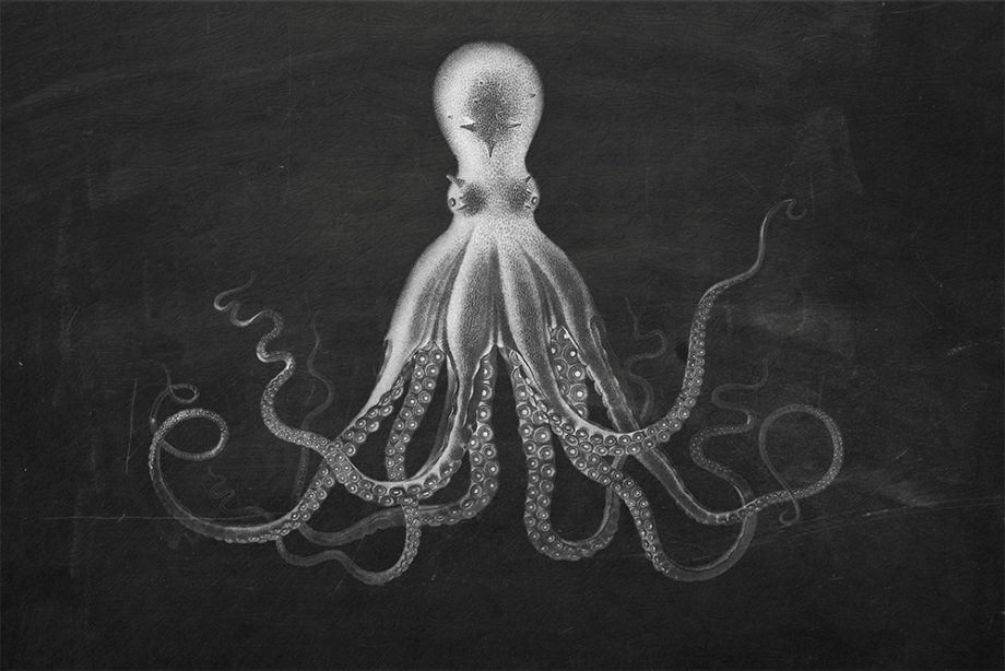 Lord Bodners Octopus Art Print Sea Squid 18x24 24x36 Vintage Nautical Decor Ocean Wall Art - Large Giclee Print