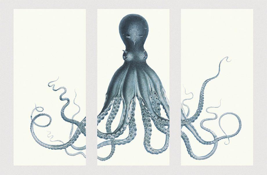 "Lord Bodner's Octopus Triptych Art Print 72"" x 52"" Sea Squid Vintage Nautical Decor Ocean Wall Art Large Giclee Print Cotton Canvas & Satin"