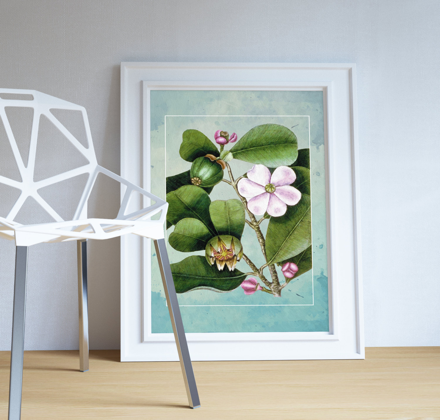 magnolia-catesby-flowering-tree-decor-magnolia-art-botanical- : magnolia wall art - www.pureclipart.com