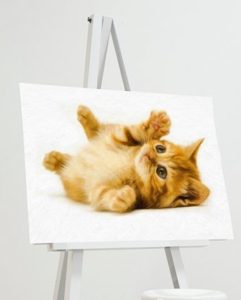 Marmalade Kitten Print Illustration Decor Ocean Wall Art - Giclee Print on Cotton Canvas and Paper Canvas