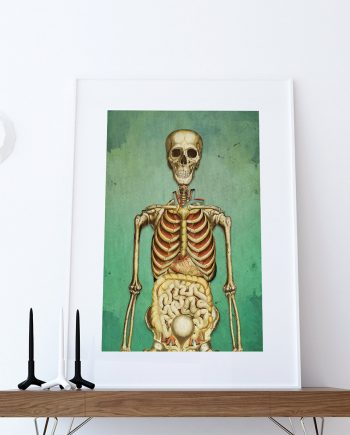 Medical Illustration Skeleton Print Vintage Illustrated Antique Human Giclee Cotton Canvas or Paper Canvas Wall Decor Art