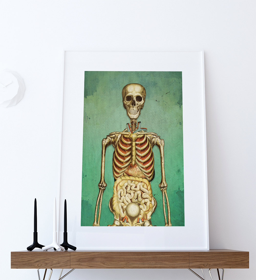 Medical Illustration Skeleton Print Vintage Illustrated Human Giclee