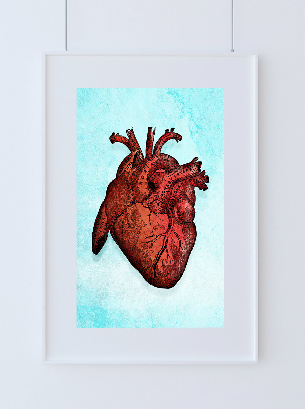 Medical Illustration Vintage Victorian Human Heart Anatomy Poster 18x24 24x36 - Large Giclee Print on Cotton Canvas and Satin Photo Paper
