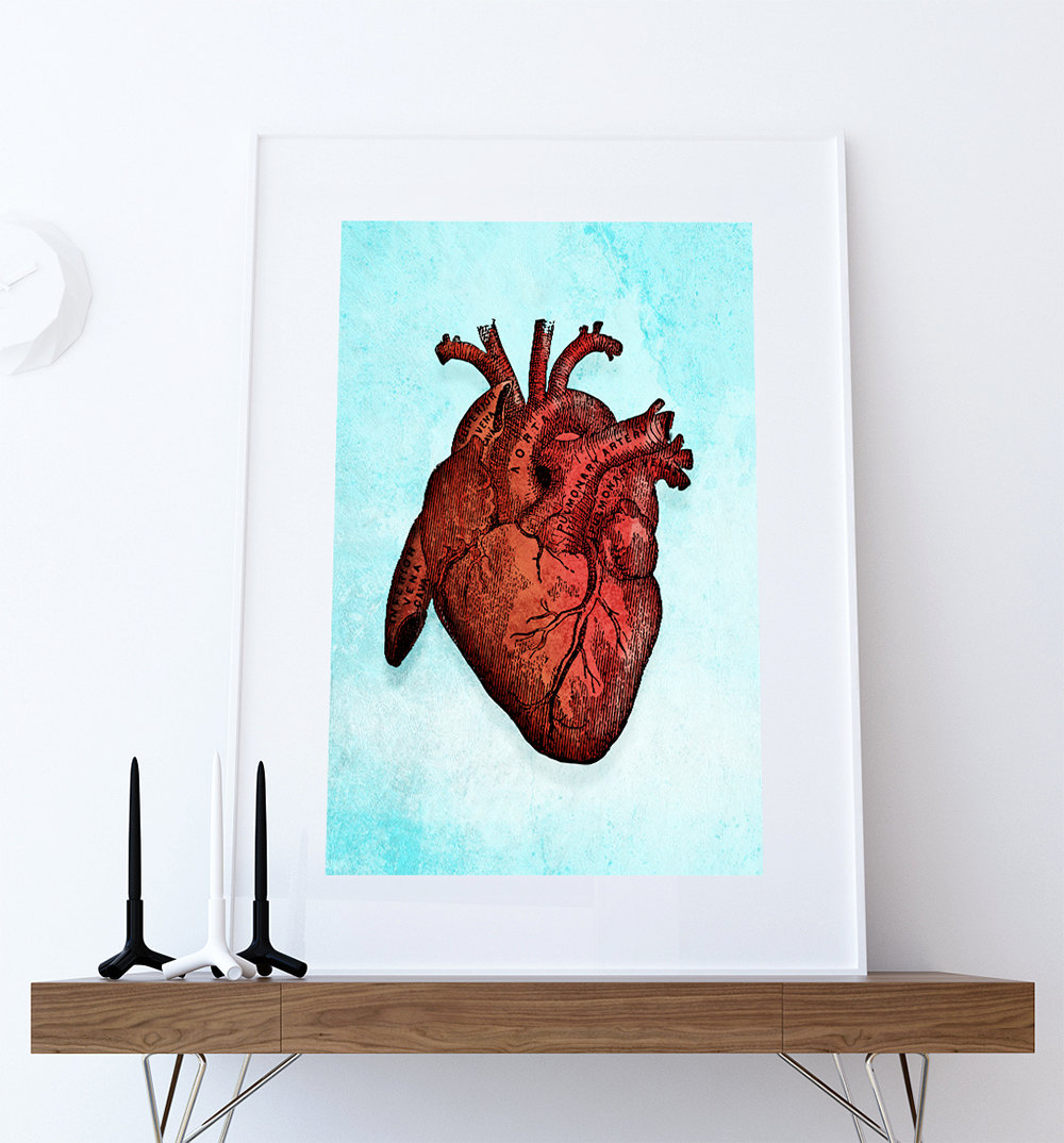 Medical Illustration Vintage Victorian Human Heart Anatomy Poster 18 ...