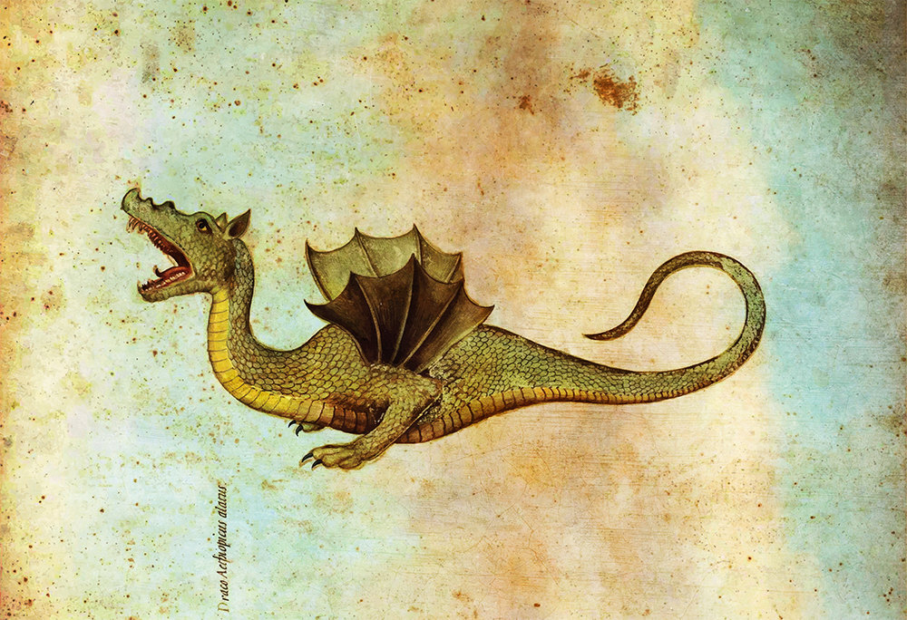 Medieval Dragon Print Vintage Wall Art – Large Giclee Print on ...