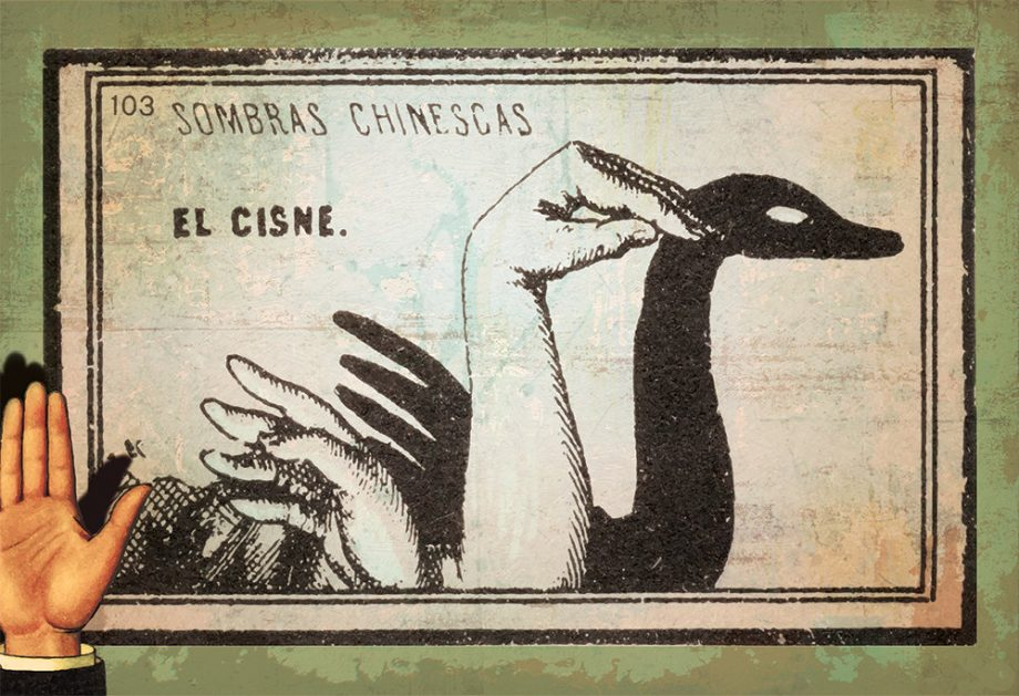 Mexican Shadow Puppet Show Print El Cisne Decor Giclee Print on Cotton Canvas and Paper Canvas Poster Home Wall Art