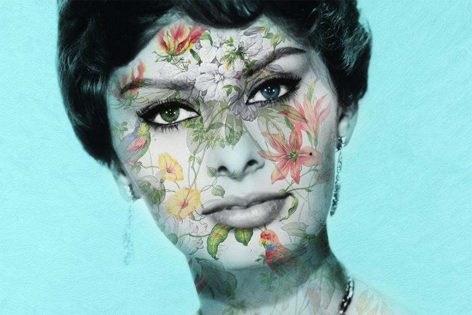 Modern Floral Sophia Loren Print Vintage Giclee on Cotton Canvas and Satin Photo Paper