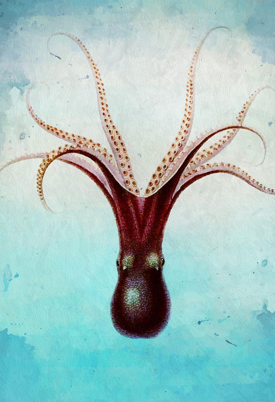 Octopus Art Print Sea Squid Vintage Nautical Decor Ocean Wall Art Giclee Print on Cotton Canvas and Satin