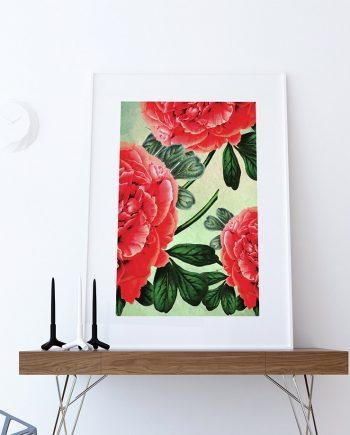 Paeonia Moutan decor Paeonia Moutan art botanical print flower kitchen decor floral print floral wall decor Paeonia Moutan wall art Canvas
