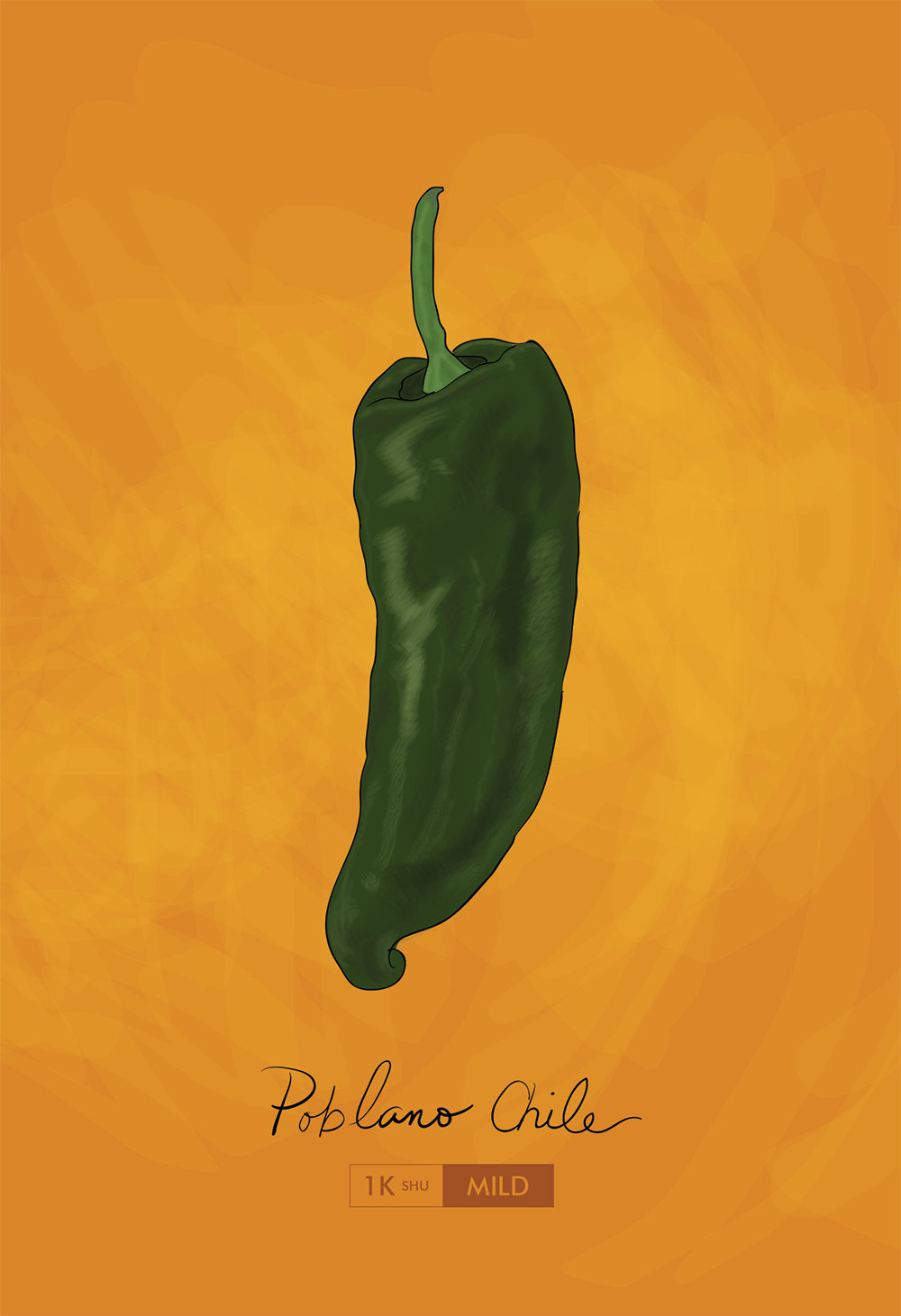 Poblano Chili Pepper Kitchen Print Giclee Original Art Large Print ...