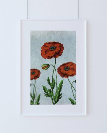 Poppy decor Poppy art Poppy vintage botanical print Poppy kitchen decor Poppy print Poppy wall decor Poppy wall art on Cotton Canvas & Paper
