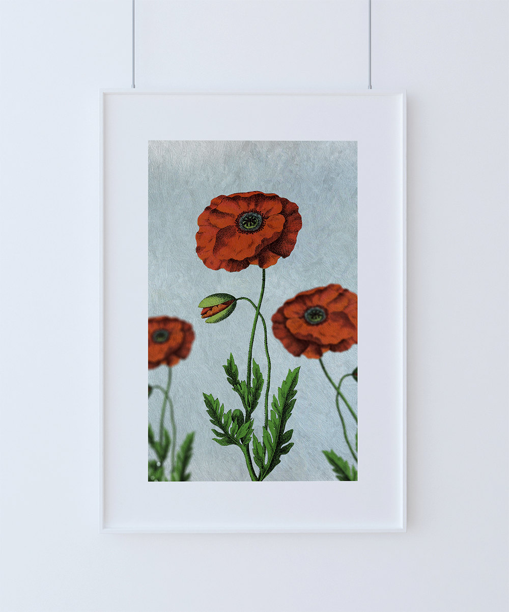 Poppy Decor Poppy Art Poppy Vintage Botanical Print