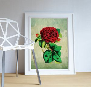 rose-decor-red-rose-art-rose-gift-botanical-print-flower-kitchen-decor-floral-print-floral-wall-decor-wall-art-canvas-5817a9dd3.jpg