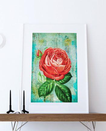 Rose Print botanical print flower Rose decor floral print floral wall decor Rose wall art Canvas