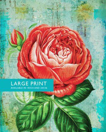 Rose Print Rose art botanical print flower kitchen decor floral print floral wall decor Rose wall art