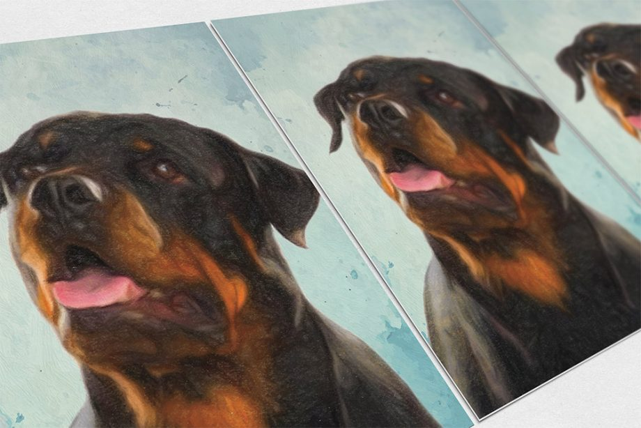 Rottweiler Dog Print illustration Art Print Poster Giclee on Cotton Canvas and Satin Photo Paper