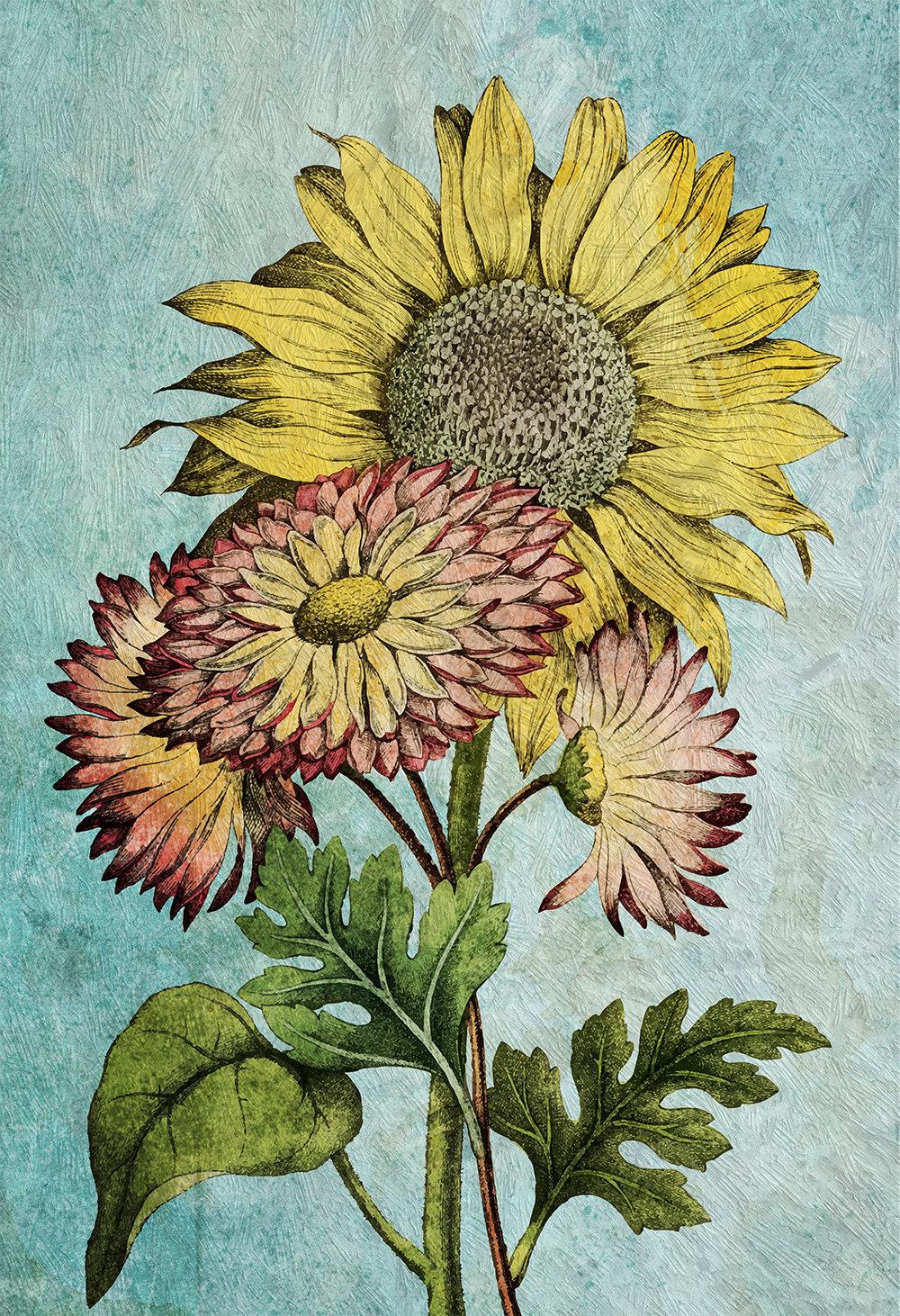 sunflower decor sunflower art sunflower gift botanical print - Sunflower Kitchen