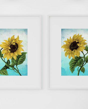 Sunflower Print Set of Two art botanical print flower Sunflowers decor floral print floral wall decor Sunflower wall art Canvas