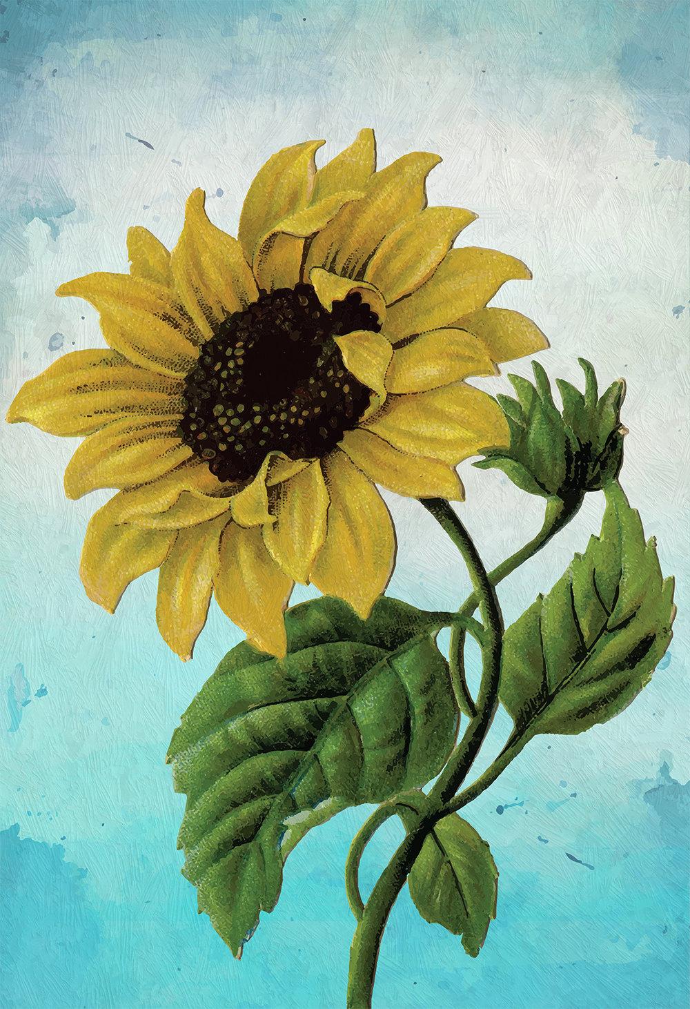 Sunflower Print Set of Two art botanical print flower ...