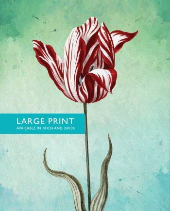 Tulips PrintTulip art botanical print flower kitchen decor floral print floral wall decor Tulip wall art